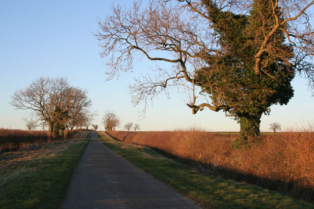 Mill Lane, Pickworth