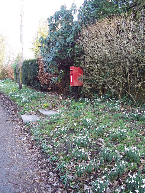 Postbox and spring flowers at Baverstock