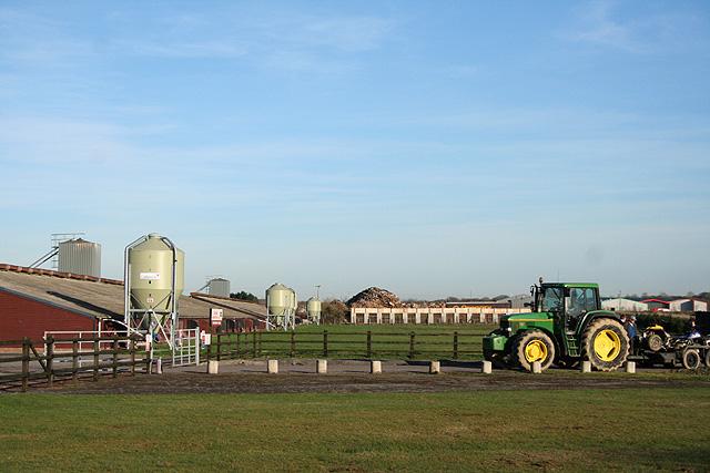 Winkleigh: Winkleigh Farm