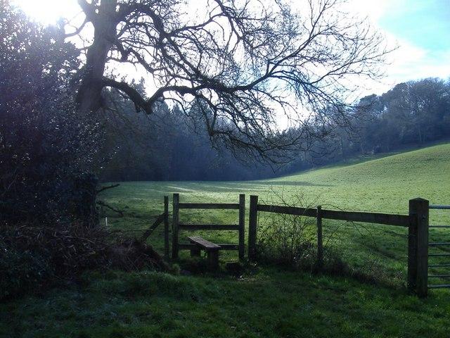 Footpath to West Tanpit Wood