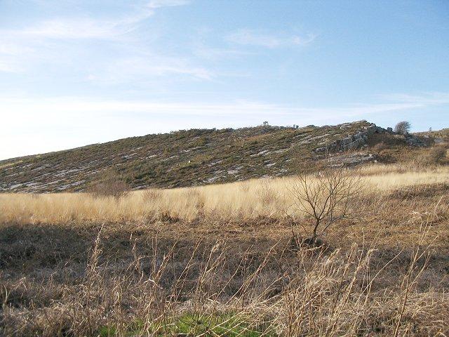 Rock slab on Mynydd Llangyndeyrn