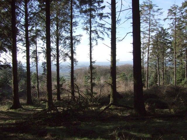 Peekhill Plantation