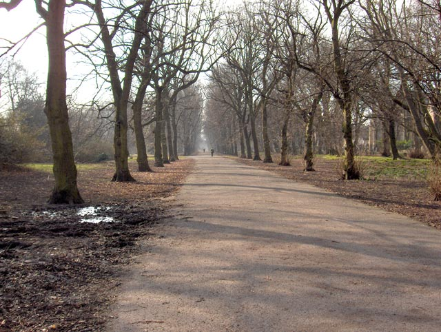 Alexandra Park in March