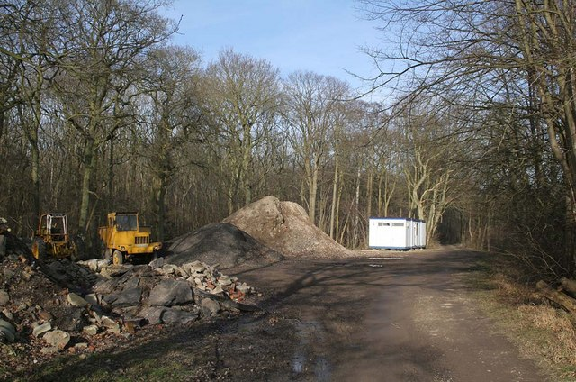 Stainton Wood