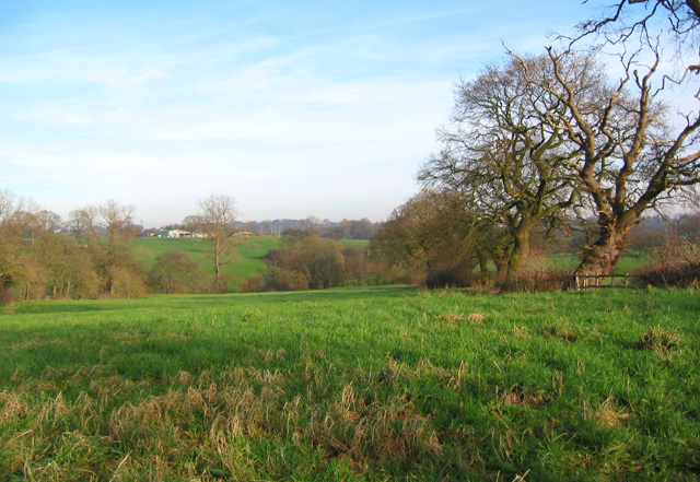 Pasture south east of Hough Bridge