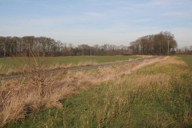 Near Goltho Grange