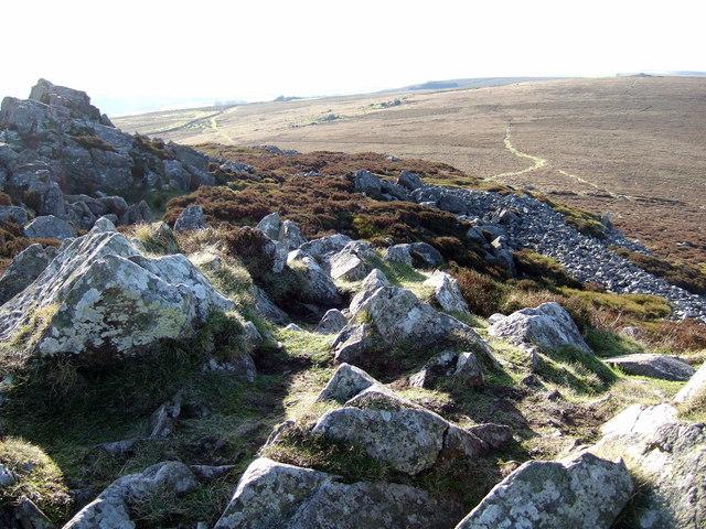 Carn Briw and Carningli common