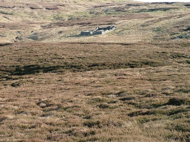 Sheepfold on Mickle Fell