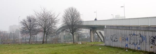 Bridge over the Princess Parkway