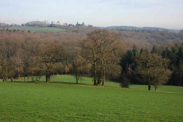 View towards Castle Hill