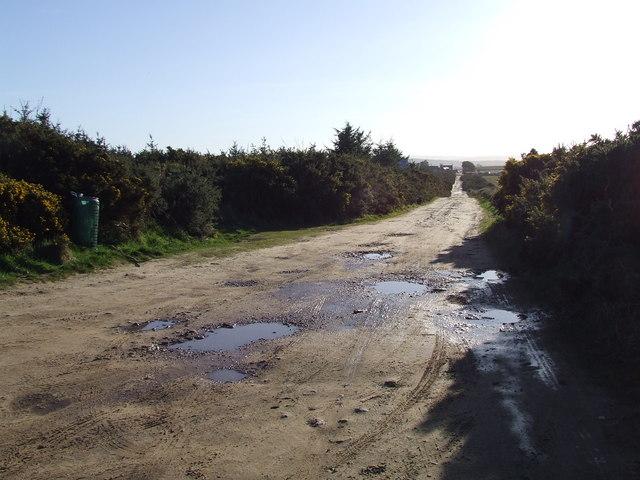 Track to dinosaur footprints