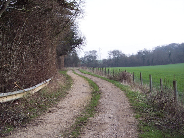 Bridleway past Treasurer's Dean Wood near Alderbury