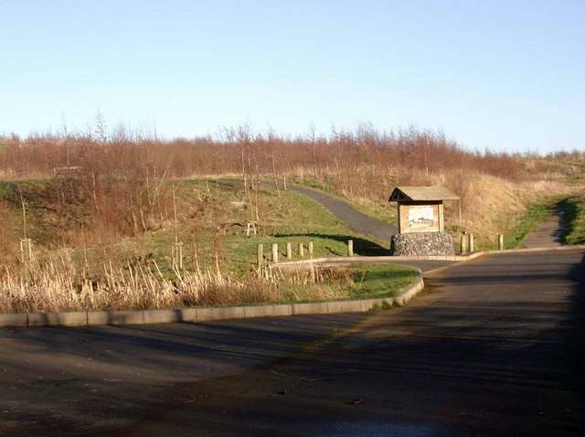 Whitehill Colliery Woodland