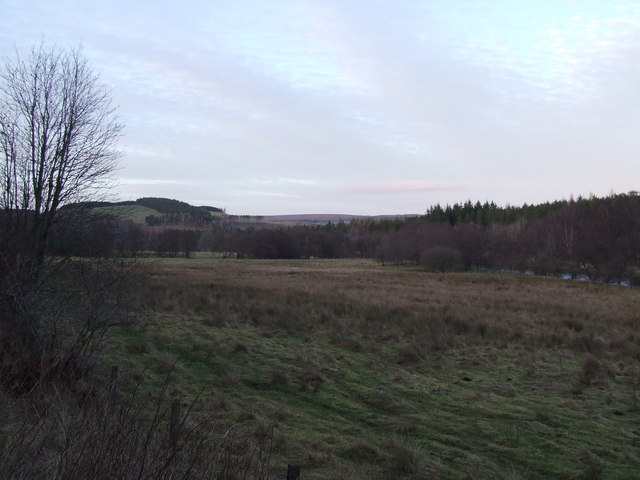 Meadow off Speyside Way, towards Dalvenuan