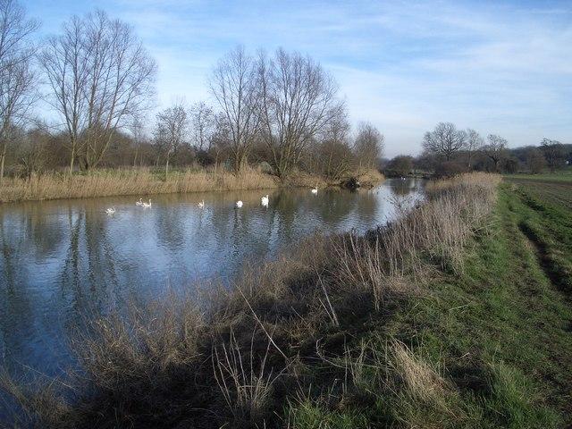 The River Great Ouse near Felmersham