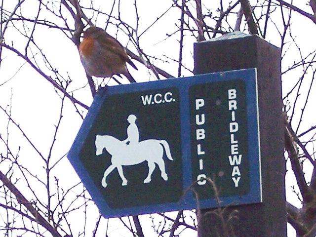 Robin on Bridleway Sign