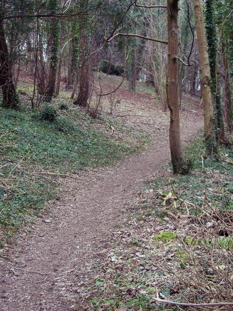 Footpath from Standlynch Farm through Trafalgar Park