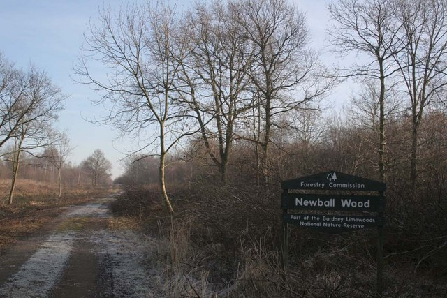 Entry to Newball Wood