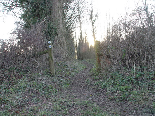Footpath to Great Coll Wood