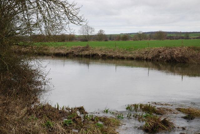 River Stour - upstream