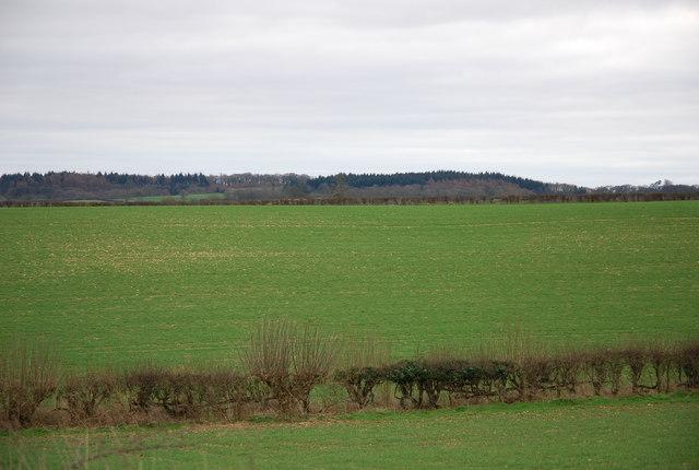 Moorcourt Farm land