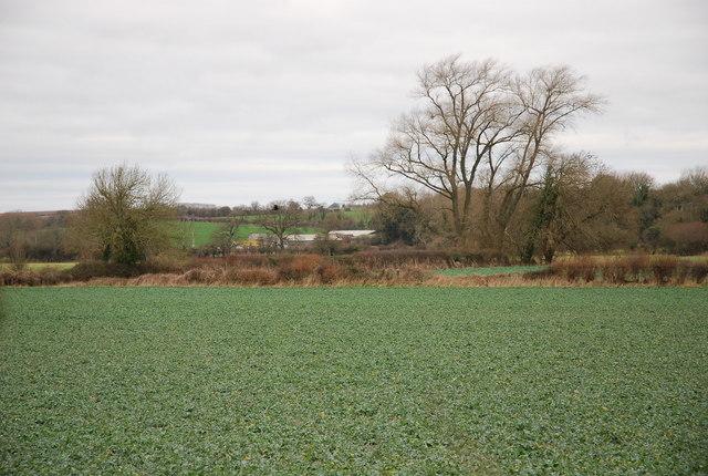 View towards Field Dairy Farm