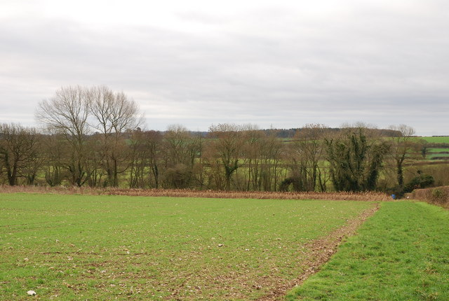 Farmland near Shapwick Source