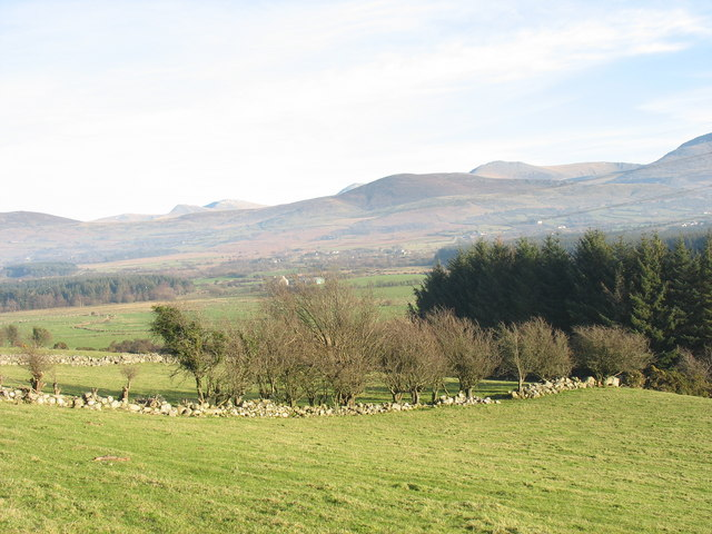 View east across pasture land towards Fferm Y Gors Farm