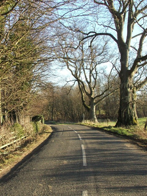 Road from Shawdon to Bolton