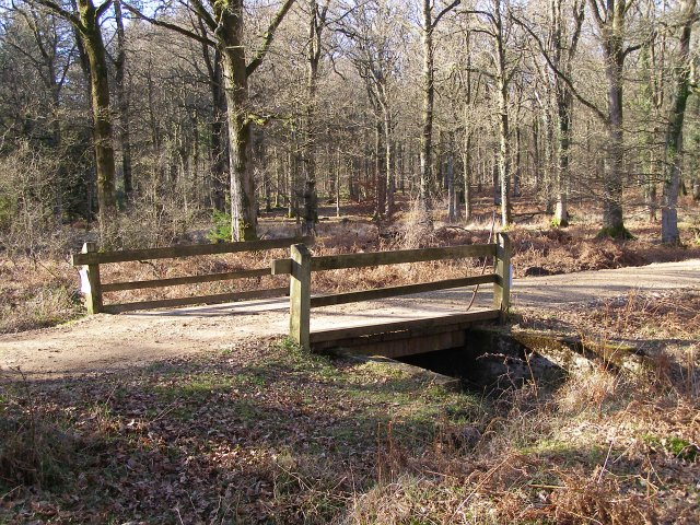 Footbridge across Linford Brook, Milkham Inclosure, New Forest