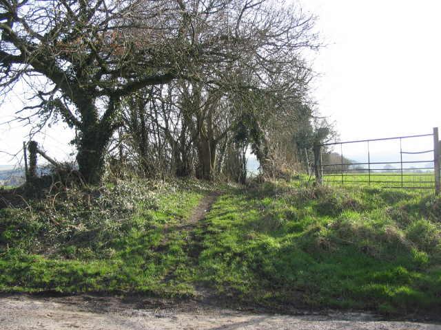 Bridleway to Rye Hill Farm