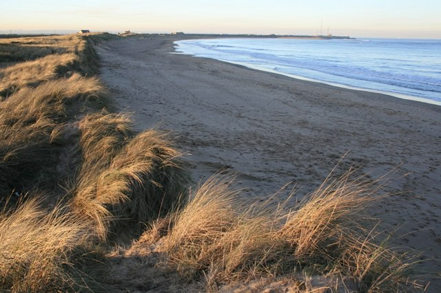 Dunes, South Gare