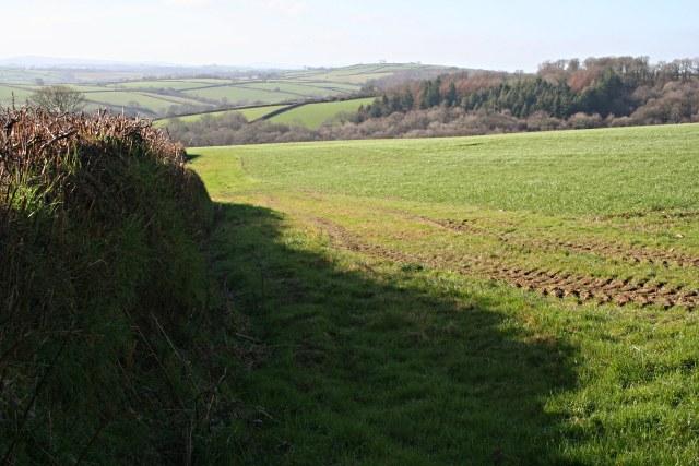 Farmland and Hurdondown Wood