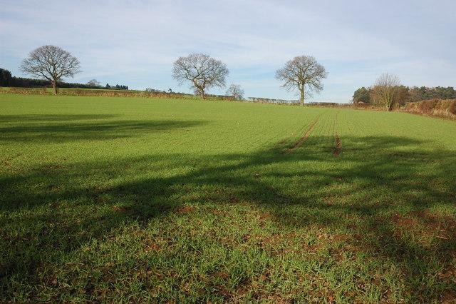 Farmland to the north of Gipsy Lane, Kinver