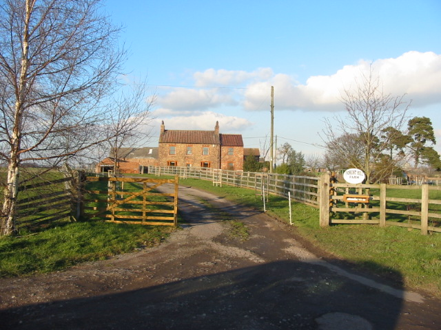 Forest Hill Farm