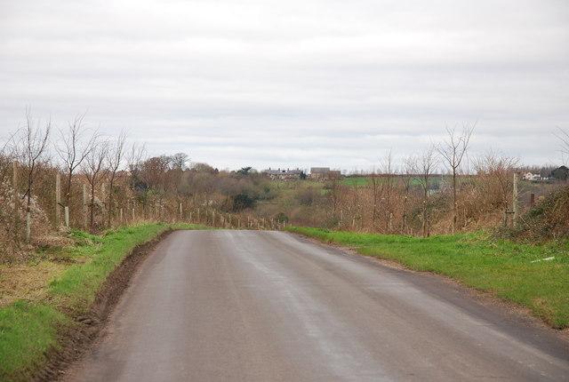 Witchampton Lane