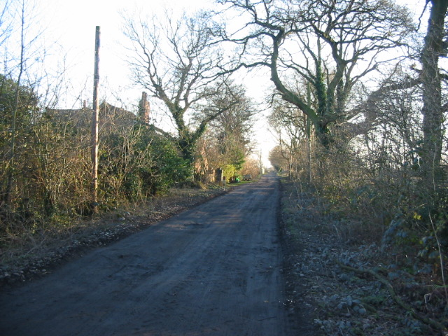 Unmetalled track near Huby