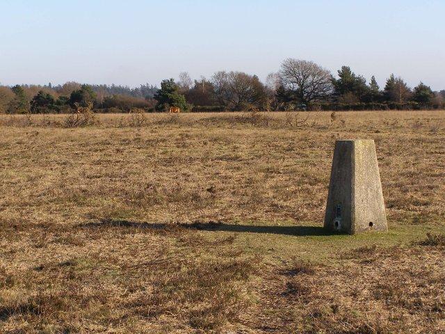Triangulation pillar on Bratley Plain, New Forest