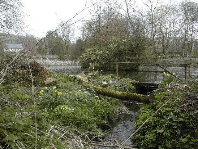 Spring at Compton Abbas, Dorset