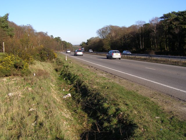 A31(T) dual carriageway, Bratley Plain, New Forest