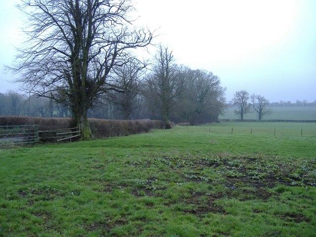Fields near Hannington
