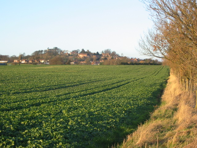 View of crops with the village of Crayke in the distance