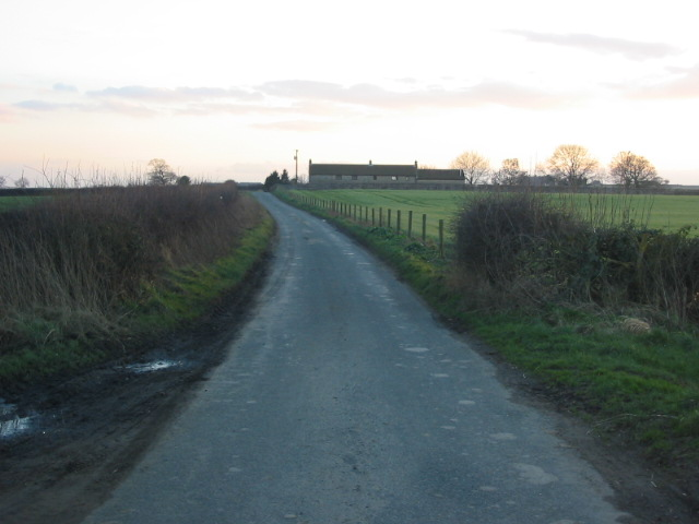 Lane heading towards Novay Farm