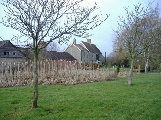 Box Hedge farm