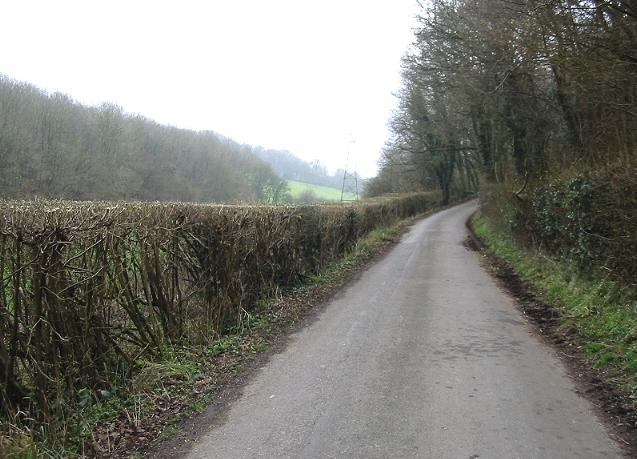Pett Bottom road as it starts to climb towards Stelling Minnis