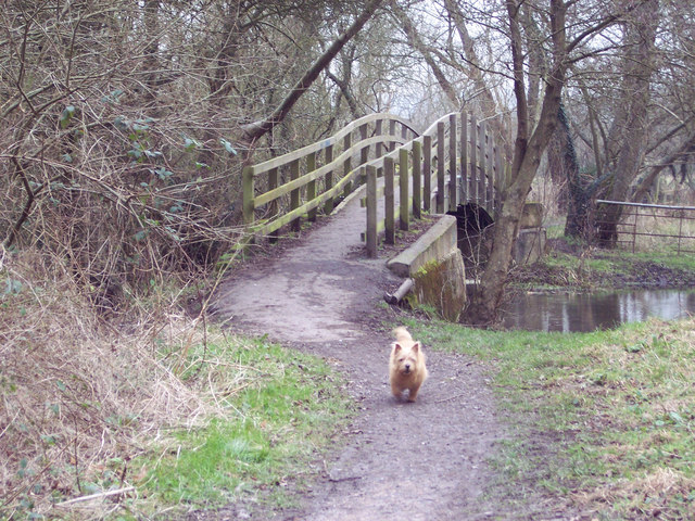Footbridge on footpath to Bemerton