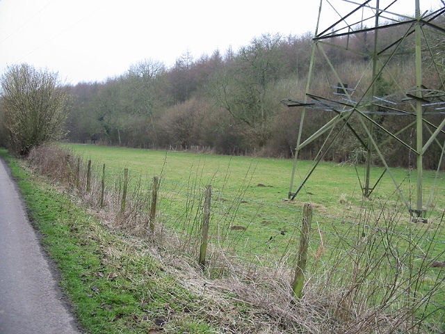 Atchester wood and pylon in meadow W of Pett Bottom Road