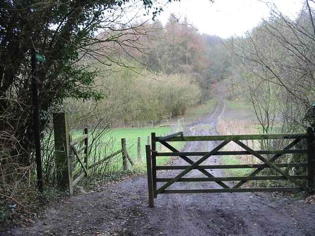 Gated track into Atchester Wood