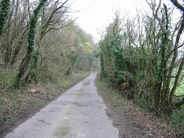 Looking S along Pett Bottom Road