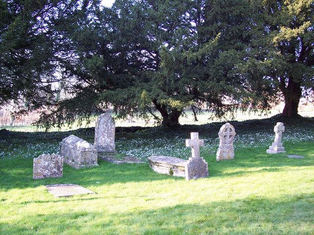 Gravestones and Snowdrops at St Margaret of Antioch, Chilmark